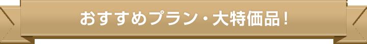 おすすめプラン・大特価品!